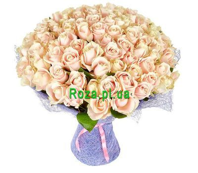 """VIP bouquet 101 cream-colored roses"" in the online flower shop roza.pl.ua"