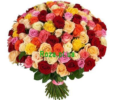 """VIP bouquet 151 multi-colored rose"" in the online flower shop roza.pl.ua"