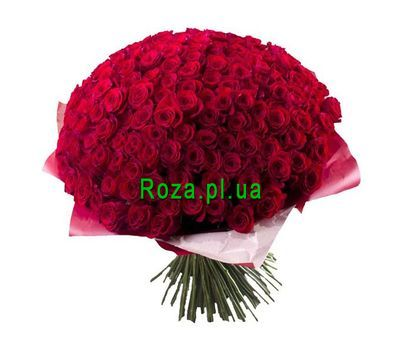 """Bouquet of 501 roses"" in the online flower shop roza.pl.ua"