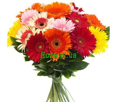 """Bouquet of 35 gerberas"" in the online flower shop roza.pl.ua"
