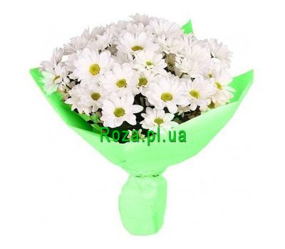 """Bouquet of 7 chrysanthemums"" in the online flower shop roza.pl.ua"