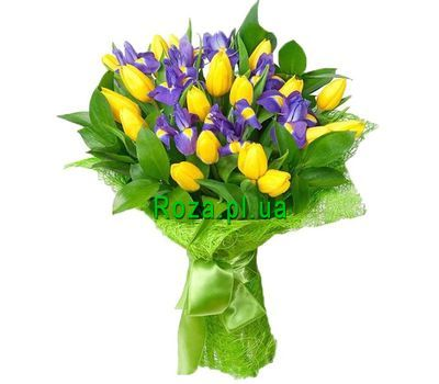 """Bouquet of 8 irises and 19 tulips"" in the online flower shop roza.pl.ua"