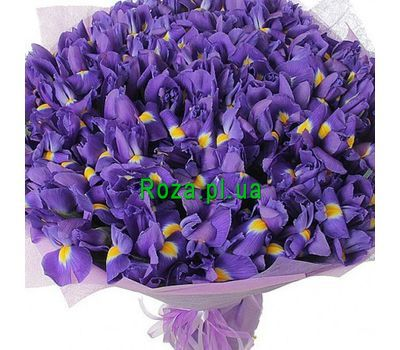 """Bouquet of 101 Iris"" in the online flower shop roza.pl.ua"