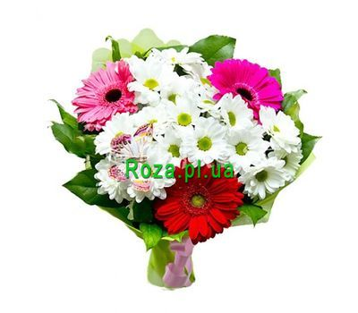 """Bouquet of 3 gerberas and 4 chrysanthemums"" in the online flower shop roza.pl.ua"