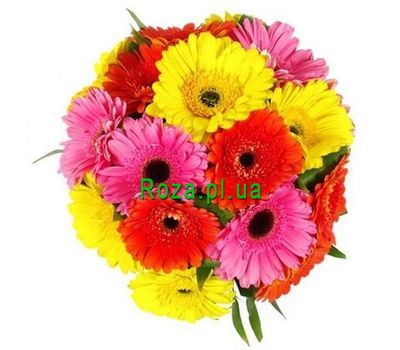 """Bouquet of 19 gerberas"" in the online flower shop roza.pl.ua"
