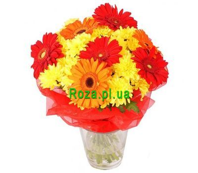 """Bouquet of 6 chrysanthemums and 7 gerberas"" in the online flower shop roza.pl.ua"