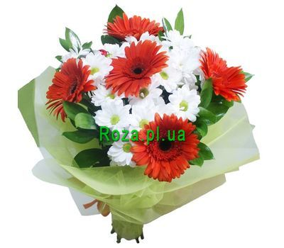 """Bouquet of 4 chrysanthemums and 5 gerberas"" in the online flower shop roza.pl.ua"