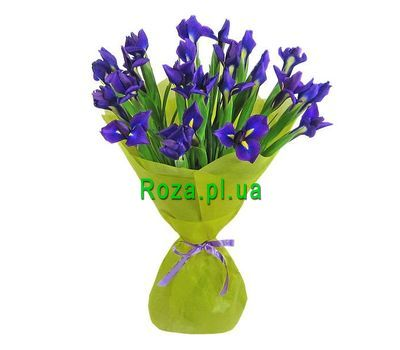 """Bouquet of 21 irises"" in the online flower shop roza.pl.ua"