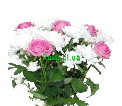 """Bouquet of 5 roses and 2 chrysanthemums"" in the online flower shop roza.pl.ua"
