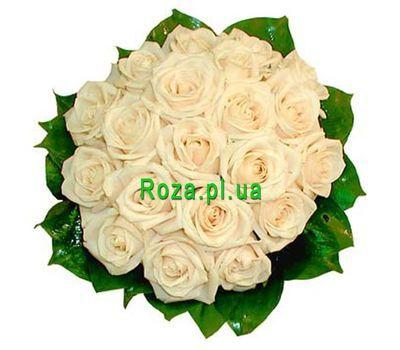 """Букет із 19 кремових троянд"" в интернет-магазине цветов roza.pl.ua"