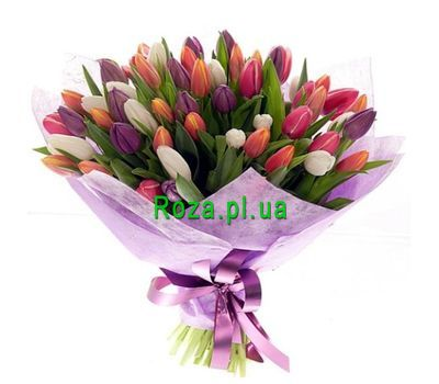 """Bouquet of 55 Tulips"" in the online flower shop roza.pl.ua"
