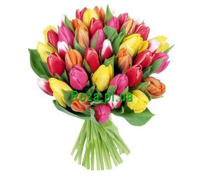 """""""Bouquet of 41 tulips"""" in the online flower shop roza.pl.ua"""