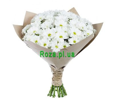 """Bouquet of 15 chamomiles"" in the online flower shop roza.pl.ua"