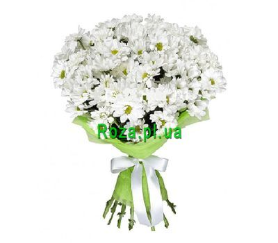 """Bouquet of 11 chamomiles"" in the online flower shop roza.pl.ua"