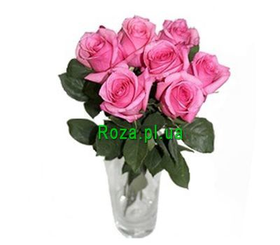 """Bouquet of 7 pink roses"" in the online flower shop roza.pl.ua"