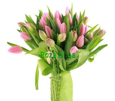 """Bouquet of 35 Tulips"" in the online flower shop roza.pl.ua"