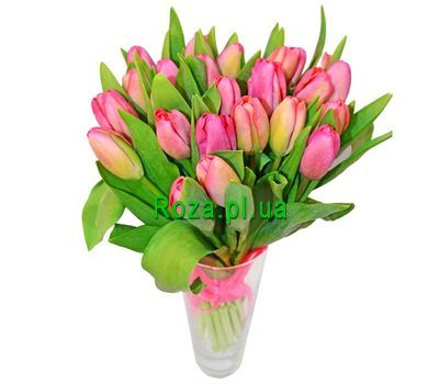 """Bouquet of 21 tulips"" in the online flower shop roza.pl.ua"