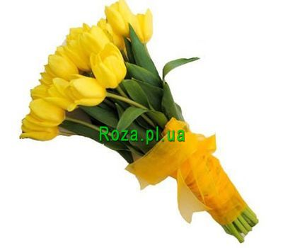 """Bouquet of 27 Tulips"" in the online flower shop roza.pl.ua"