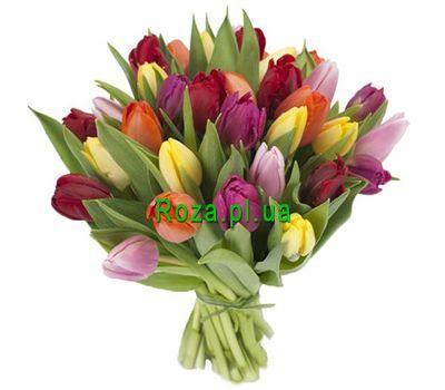 """""""Bouquet of 29 Tulips"""" in the online flower shop roza.pl.ua"""