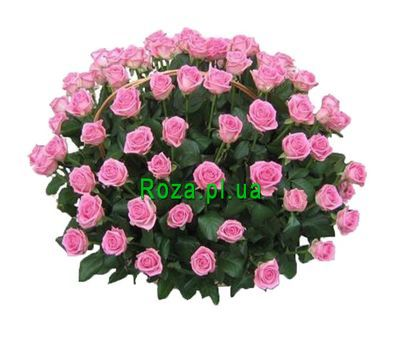 """""""Корзина из 121 розовых роз"""" в интернет-магазине цветов roza.pl.ua"""