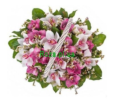 """Basket of 19 Orchids"" in the online flower shop roza.pl.ua"