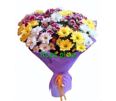"""Bouquet of 25 multi-colored chrysanthemums"" in the online flower shop roza.pl.ua"