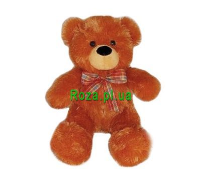 """Soft toy - Bear brown"" in the online flower shop roza.pl.ua"