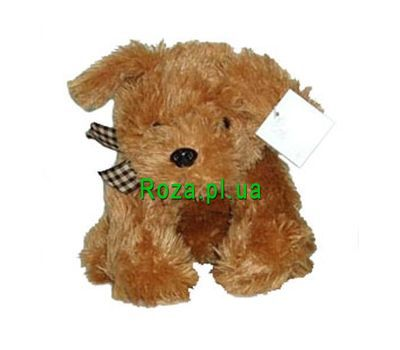 """Soft toy - Doggie"" in the online flower shop roza.pl.ua"