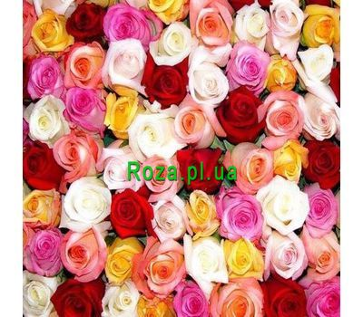"""Multicolored roses by the piece"" in the online flower shop roza.pl.ua"