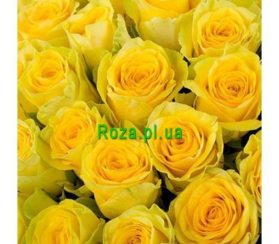 """Yellow roses per piece"" in the online flower shop roza.pl.ua"